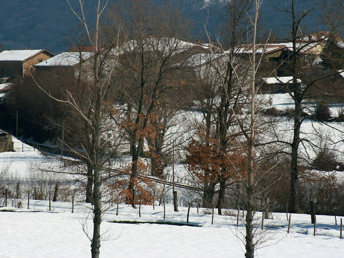 The village in the snow